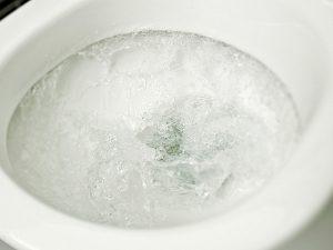 Las causas más comunes para un inodoro atascado.